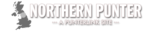 Northern Punter Banner