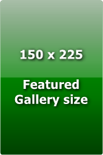 Punterlink Gallery Advert - Random Display Size 150x225